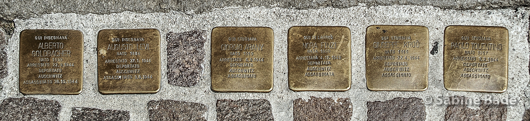 Am 21. Januar 2018 wurden zudem vor dem Eingang zum Cortile Nuovo des Palazzo Bo sechs Stolpersteine für jüdische Studierende und Lehrende der Universität Padua verlegt, die in Auschwitz ermordet wurden.